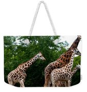 The Extended Family Weekender Tote Bag