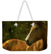 The Fairytale Horse Weekender Tote Bag