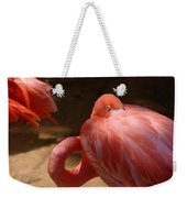 The Flamingo Wakens Weekender Tote Bag