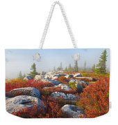The Fog Clears At Dolly Sods Weekender Tote Bag