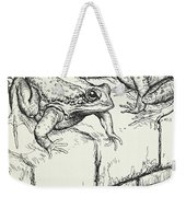 The Frogs And The Well Weekender Tote Bag