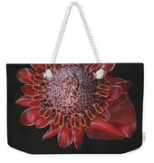 The Garden Of Light Weekender Tote Bag
