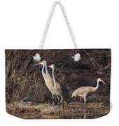 The Gathering...sandhill Cranes Weekender Tote Bag