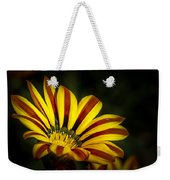 The Gazania Weekender Tote Bag