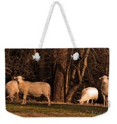 The Gazing And Grazing Sheep Weekender Tote Bag
