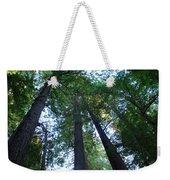 The Giant Redwoods I Weekender Tote Bag