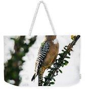 The Gila  Woodpecker Weekender Tote Bag