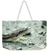 The Gray Eastern Rat Snake Right Side Head Shot Weekender Tote Bag
