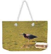 The Green Heron Eyes His Prey Weekender Tote Bag