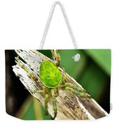 The Green Spider Weekender Tote Bag