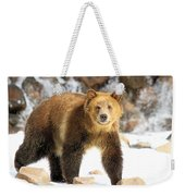 The Grizzly Strut Weekender Tote Bag