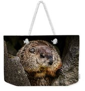The Groundhog Weekender Tote Bag