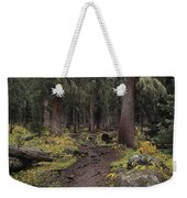 The High Forest Weekender Tote Bag by Eric Glaser