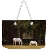 The Horse And The Pony - Standard Size Weekender Tote Bag