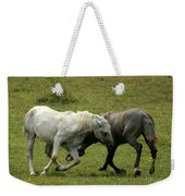 The Horse Ballet Weekender Tote Bag