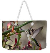 The Hummingbird And The Slipper Plant  Weekender Tote Bag