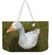 The Inquisitive Goose Weekender Tote Bag