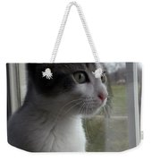 The Inquisitive Kitty Jackson Weekender Tote Bag