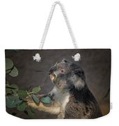 The Koala Weekender Tote Bag