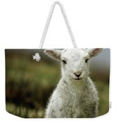 The Lamb Weekender Tote Bag by Angel  Tarantella