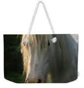 The Light In The Mane Weekender Tote Bag