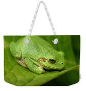 The Little Frog Weekender Tote Bag