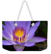The Lotus Flower - Tropical Flowers Of Hawaii - Nymphaea Stellata Weekender Tote Bag