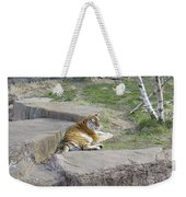 The Lounging Tiger 1 Weekender Tote Bag