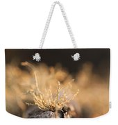 The Miniature World Of Lichen Weekender Tote Bag