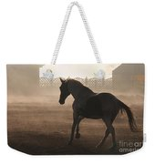 The Morning  Light Weekender Tote Bag