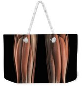The Muscles Of The Upper Legs Rear Weekender Tote Bag