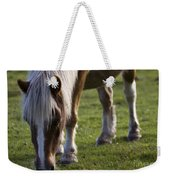 The New Forest Pony Weekender Tote Bag