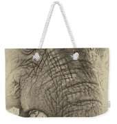 The Old Elephant Bull Weekender Tote Bag