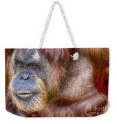 The Orangutan Album  Weekender Tote Bag