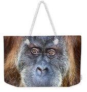 The Orangutan Album V4 Weekender Tote Bag