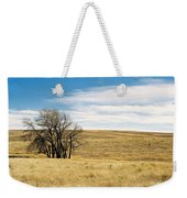 The Other Colorado Weekender Tote Bag