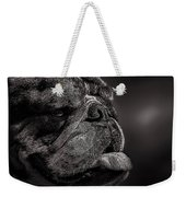 The Other Dog Next Door Weekender Tote Bag by Bob Orsillo