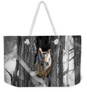 The Owl Weekender Tote Bag