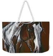 The Pinto Horse Weekender Tote Bag