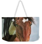 The Pinto Horse Portrait Weekender Tote Bag