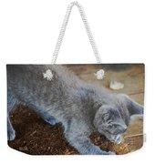 The Playful Kitten Weekender Tote Bag