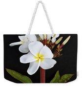 The Plumeria Weekender Tote Bag