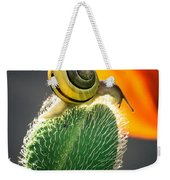 The Poppy And The Snail Weekender Tote Bag
