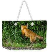 The Pounce Weekender Tote Bag
