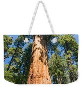 The President - Very Large And Old Sequoia Tree At Sequoia National Park. Weekender Tote Bag