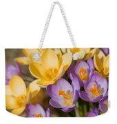 The Purple And Yellow Crocus Flowers Weekender Tote Bag