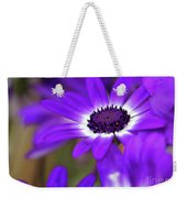 The Purple Daisy Weekender Tote Bag