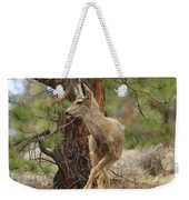 The Rudolph Dance Weekender Tote Bag