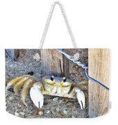 The Sandcrab - Seeking Shelter Weekender Tote Bag