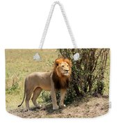 King Of The Savannah Weekender Tote Bag